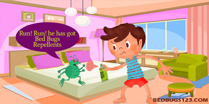 bed bugs repellent how to choose