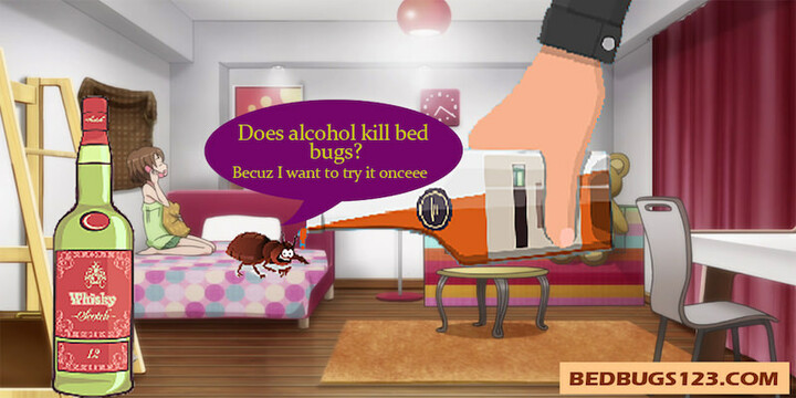 Does alcohol kill bed bugs? Is it effective against them?