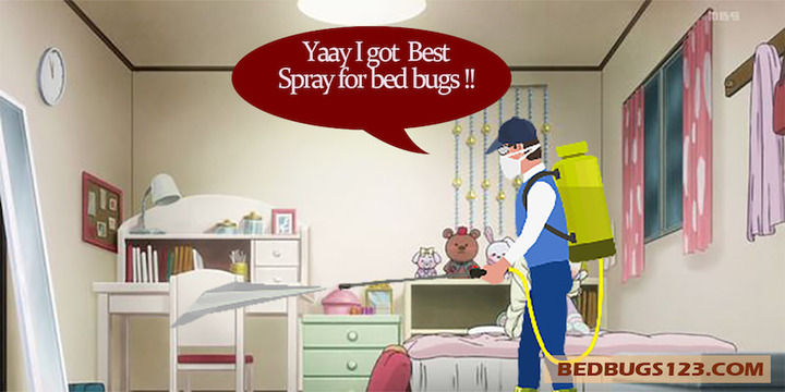 spray for bed bugs